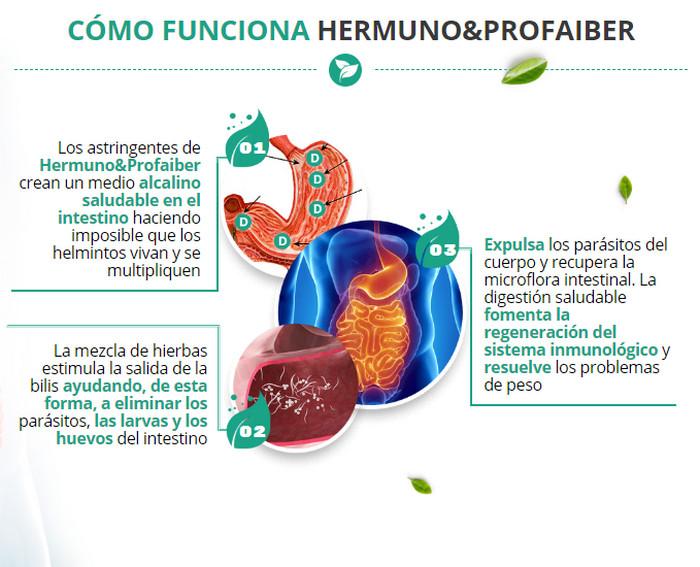 como funciona hermuno profaiber