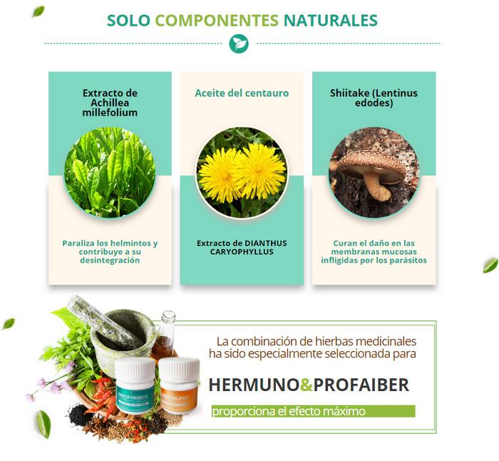 hermuno&profaiber ingredientes